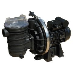 Sta-Rite 5P2R Swimming Pool Pumps