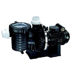 Sta-Rite 5P6R Swimming Pool Pumps