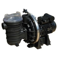 Sta-Rite 5P2R - 3 phase Swimming Pool Pumps