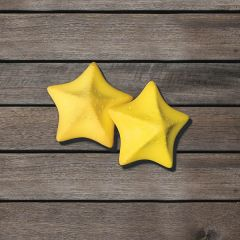 Starfish Sponges Pack of 2